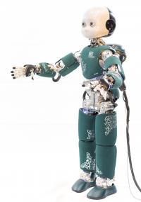 iCub Humanoid Robot Full Body
