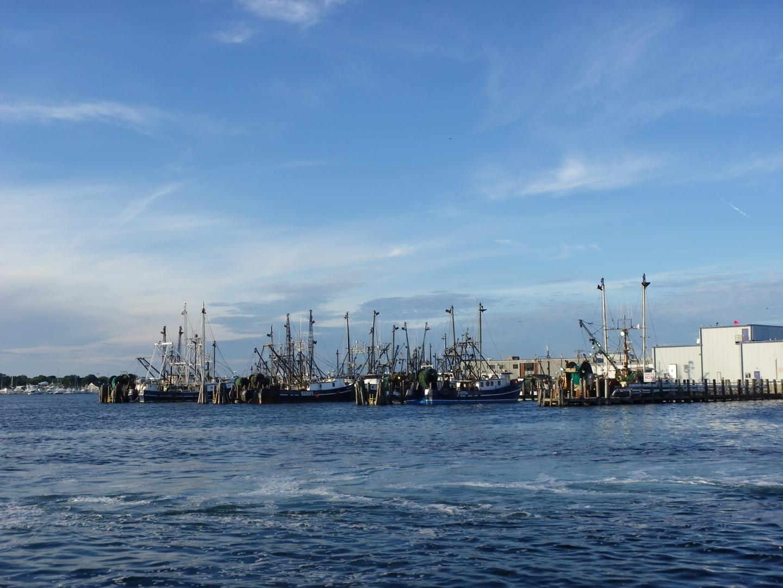 Boats docked at Point Juidth
