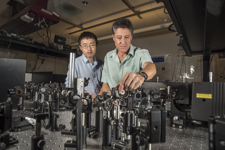 Terahertz-Speed Polarization Optical Switch