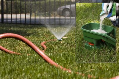 Lawn Irrigation & Fertilization Trends