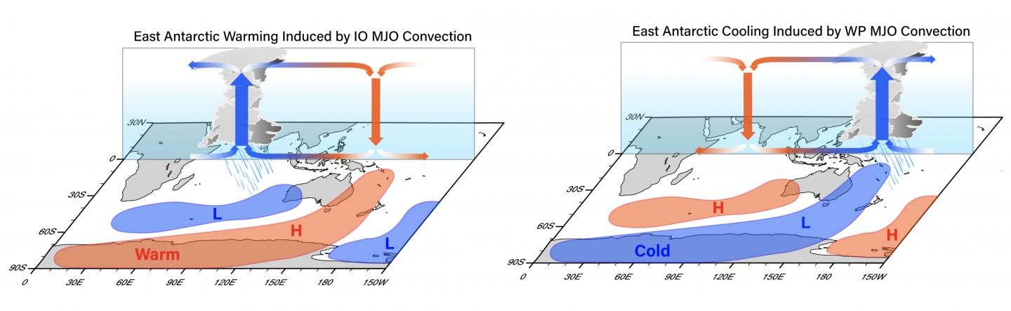 Changes in East Antarctic temperature due to MJO rainfall clusters