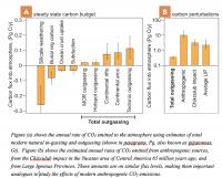 Carbon Influx and Outflux to the Atmosphere and Oceans