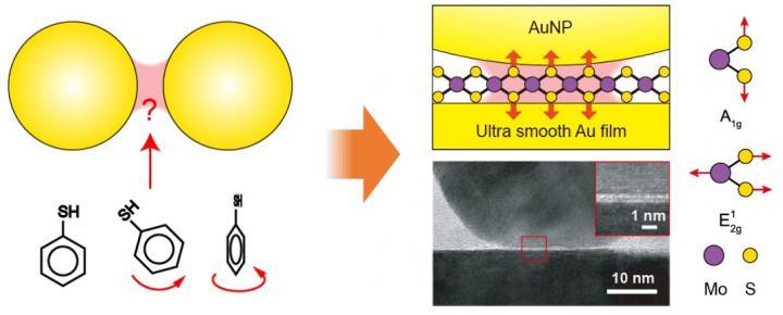 2D Atomic Crystals Probe