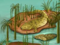 Metoposaur