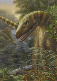 Prehistoric Dinosauriform <i>Asilisaurus</i>