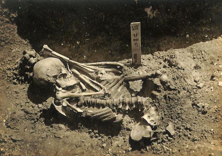 Original excavation photograph of Tsukumo No. 24,