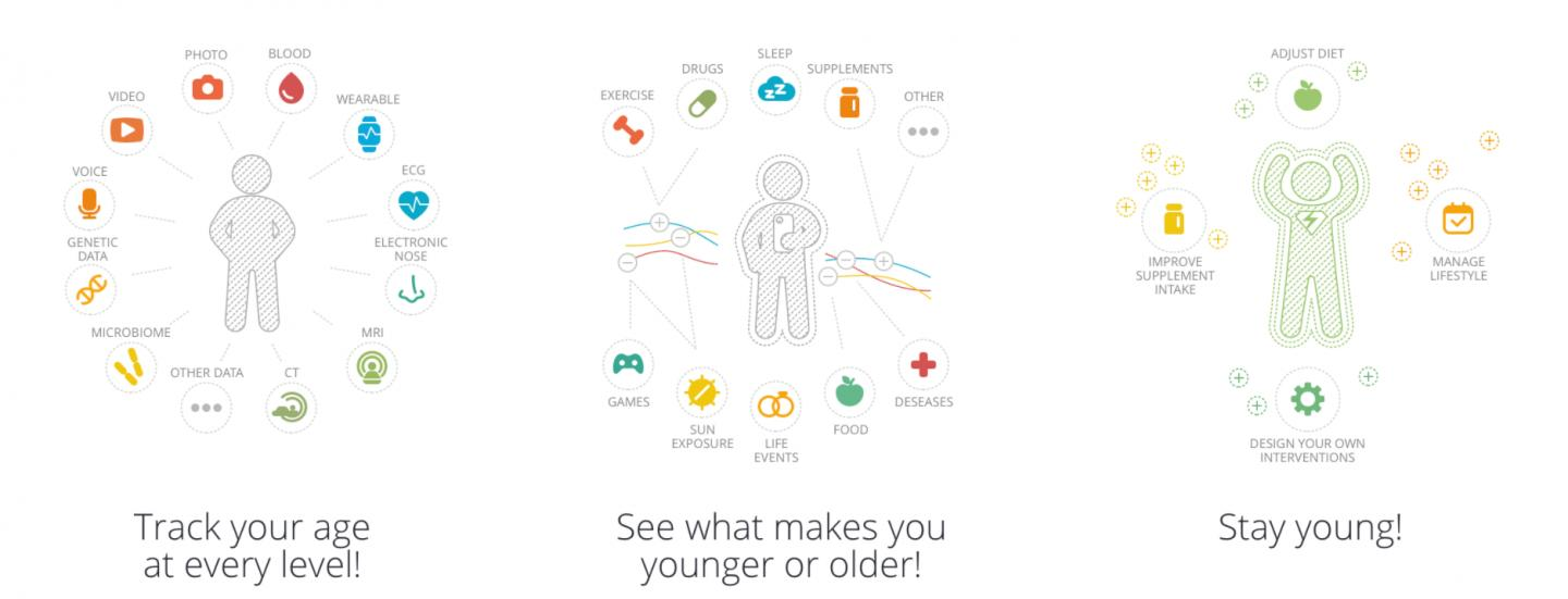 Young.ai - Artificial Intelligence for Tracking Aging in Humans