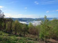 Tennessee's Cumberland Mountains