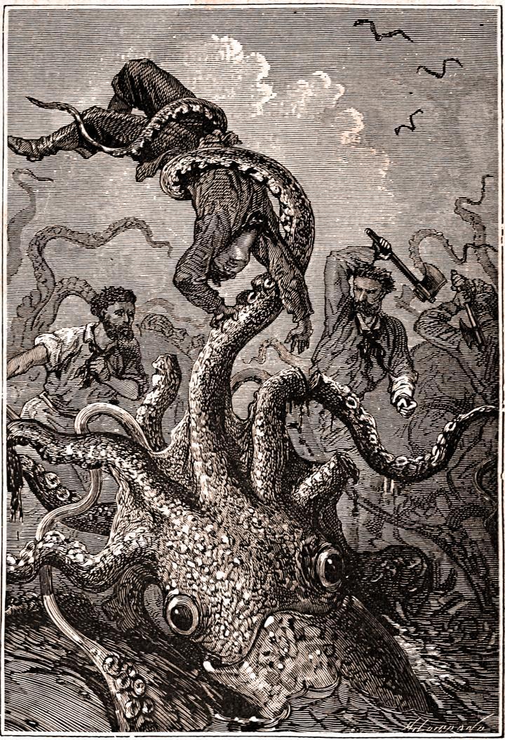Giant Squid Captures Sailor