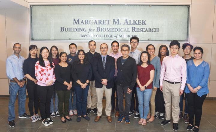 Members of the Matthew Ellis lab at Baylor College of Medicine