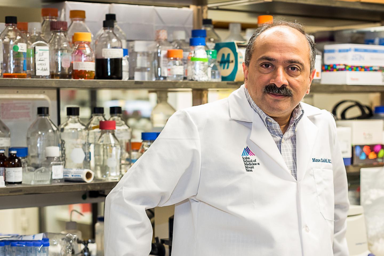 Mone Zaidi, Mount Sinai Health System