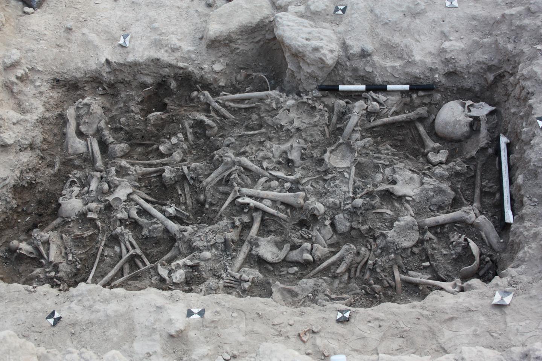 Crusader Bones