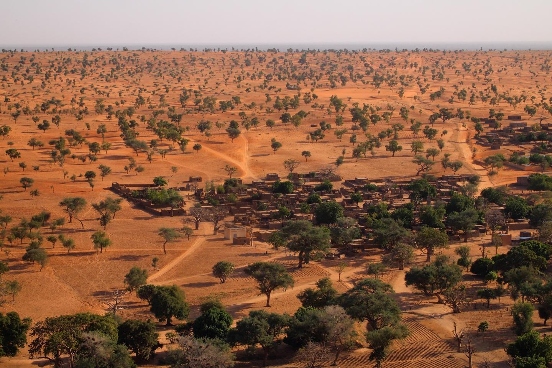 Dryland landscape in West Africa