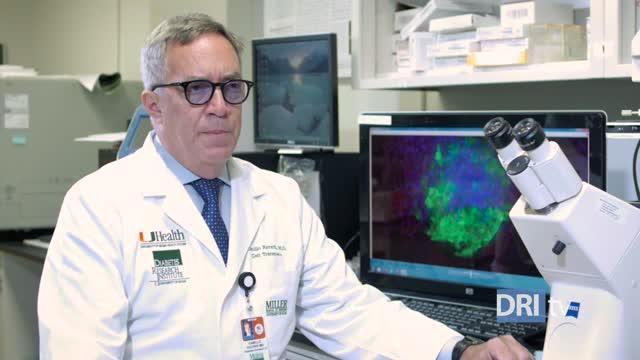 Can Omega-3 and Vitamin D Halt Diabetes Progression?