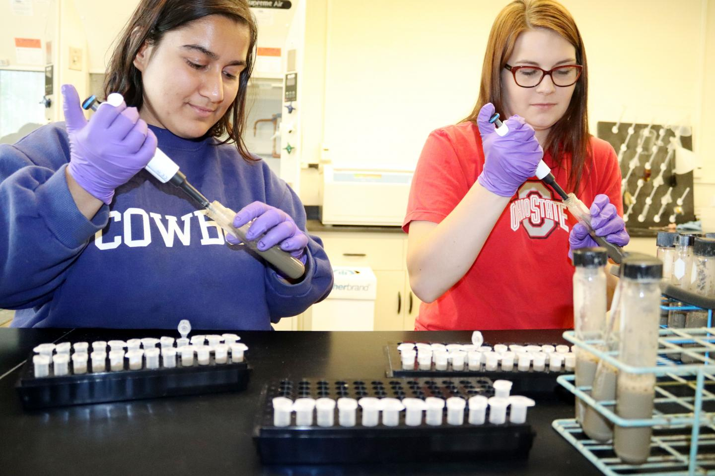Lab Technicians and Samples