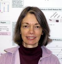 Patricia Foster, Indiana University