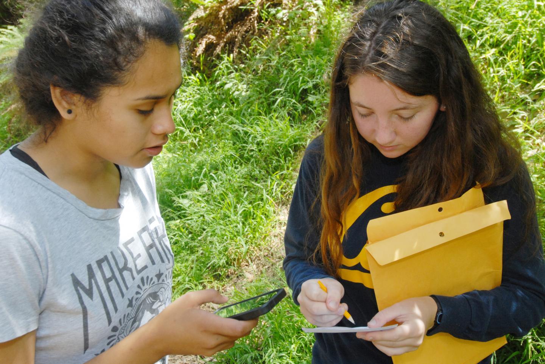Citizen Scientists Help Predict Spread of Sudden Oak Death
