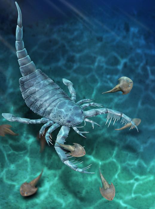 Reconstruction of Terropterus xiushanensis gen. et sp. nov.