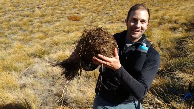 Dr Nick Foster with a hibernating hedgehog