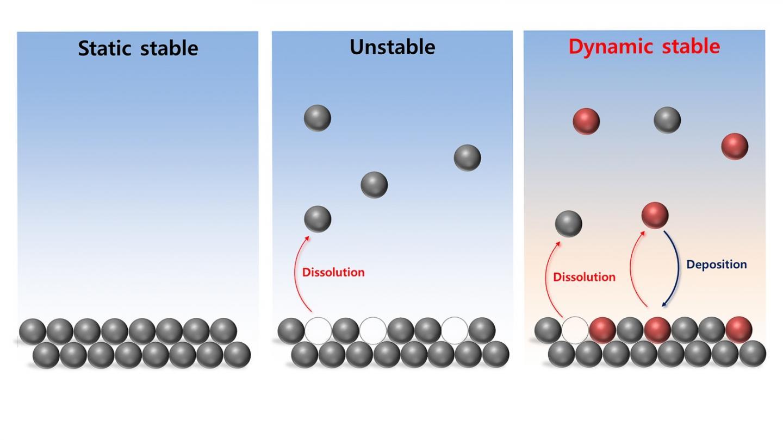 Electrochem Dynamic Stability