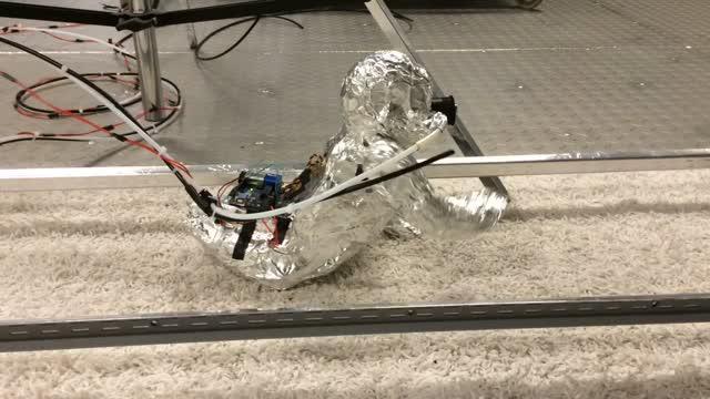 Robotic-Infant Crawling