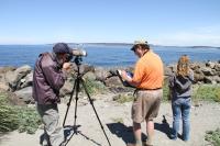 Volunteers Record Bird Sightings