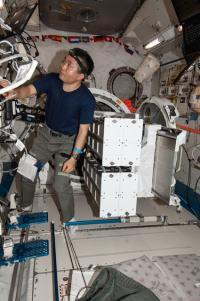 Koichi Wakata, Japan Aerospace Exploration Agency