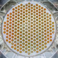 LUX-ZEPLIN Photomultiplier Tube Array