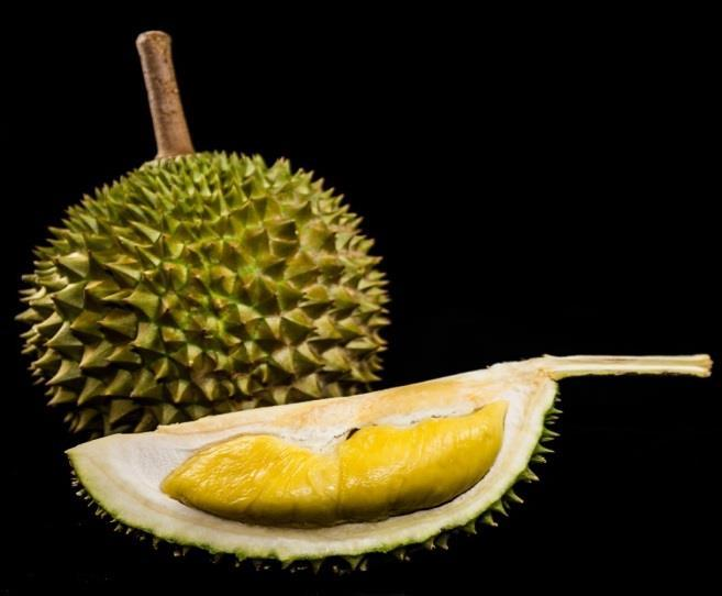 Photograph of Durian (Intact and Opened)