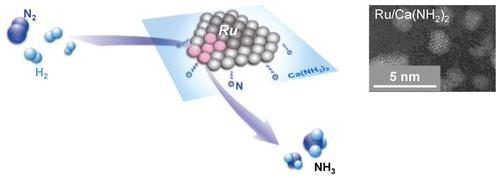 Conceptual Diagram of Ammonia Synthesis Activity