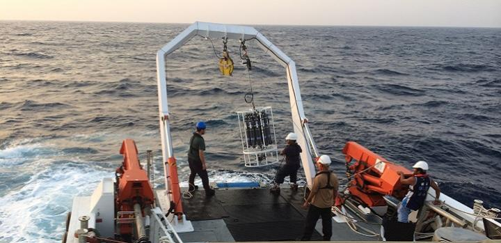 Sampling activity on the Red Sea