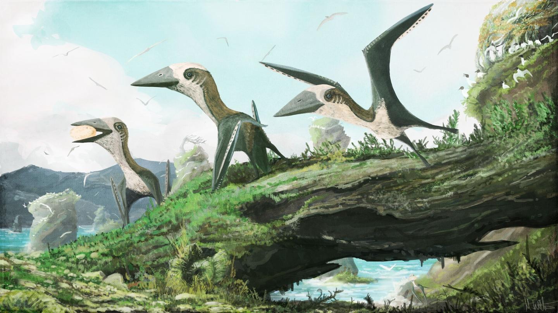 Artist Impression of the Small-Bodied, Late Cretaceous Azhdarchoid Pterosaur