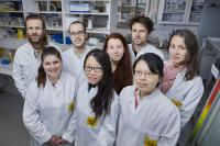 Menglin Chen Research Group