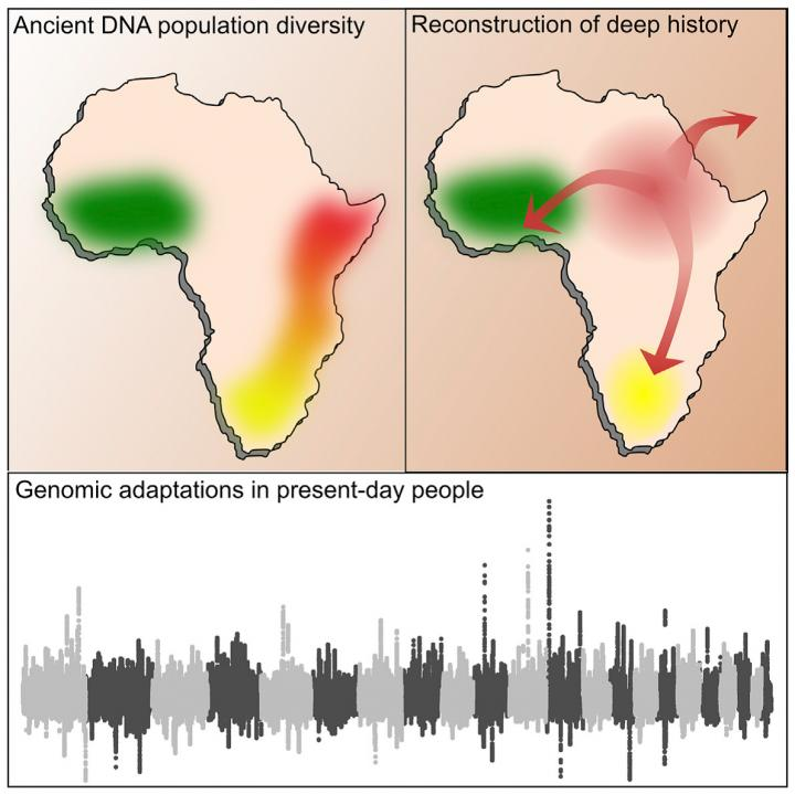 Genome-Wide Analysis of Prehistoric African Populations