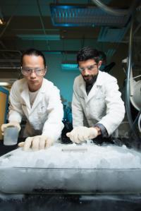 Yangyuchen Yang and Cyrus Rustomji, University of California - San Diego