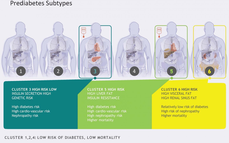 Prediabetes Subtypes