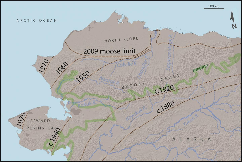 Twentieth Century Warming Allowed Moose to Colonize the Alaskan Tundra