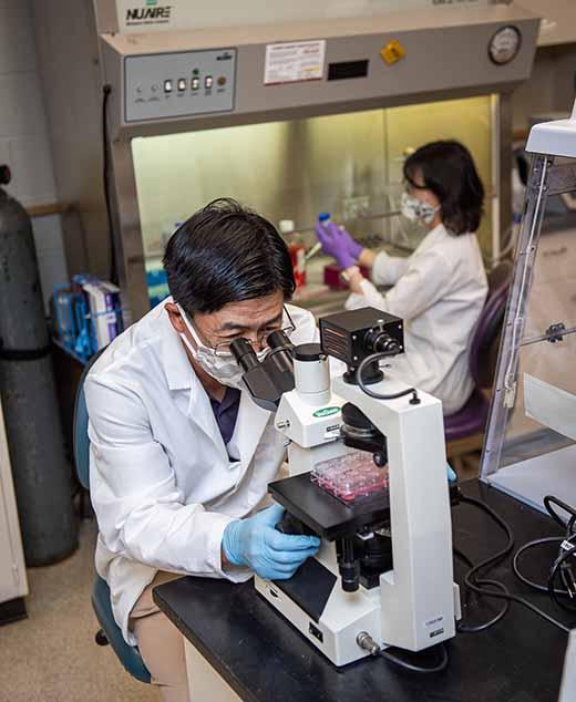 K-State virologists publish new findings on SARS-CoV-2 treatment option -- photo