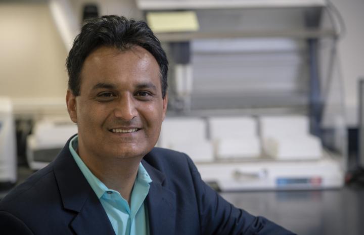 Shahid Mukhtar, University of Alabama at Birmingham