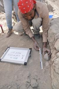 the Artifacts Are Carefully Excavated at the Field Site