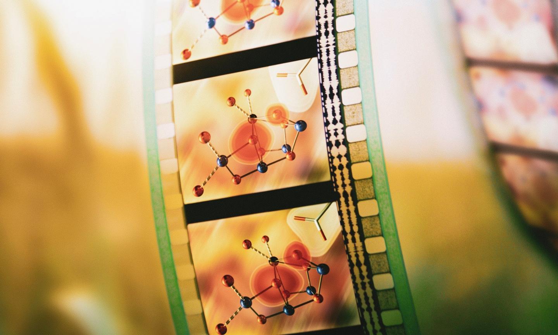 Photosynthesis movie illustration