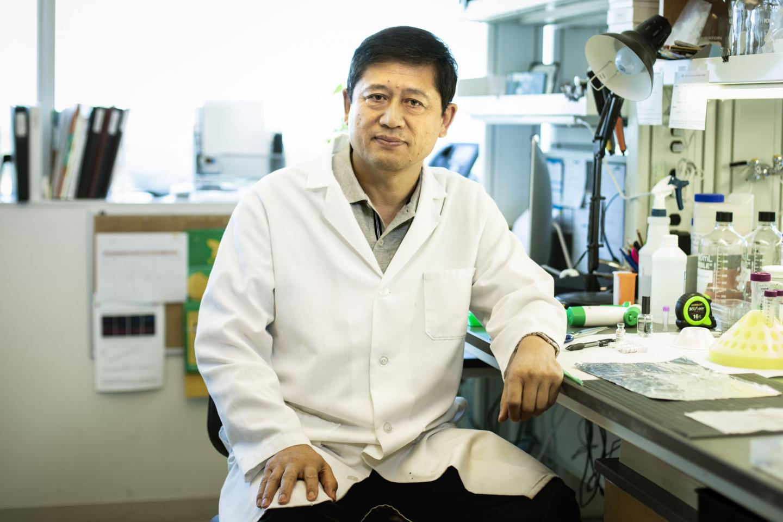 OMRF scientist Lijun Xia, M.D., Ph.D.