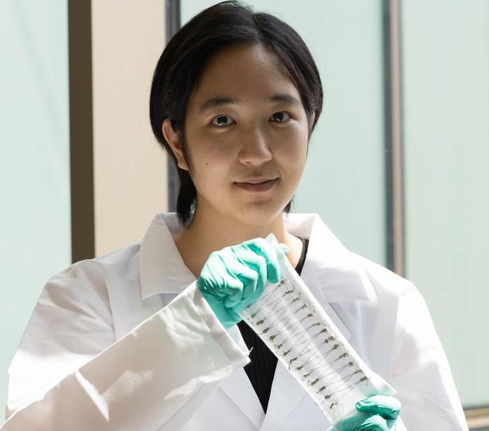 Woven nanotube fibers turn heat into power - Image 1