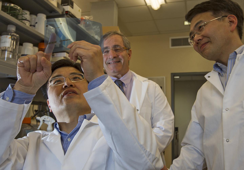 Brown University Researchers