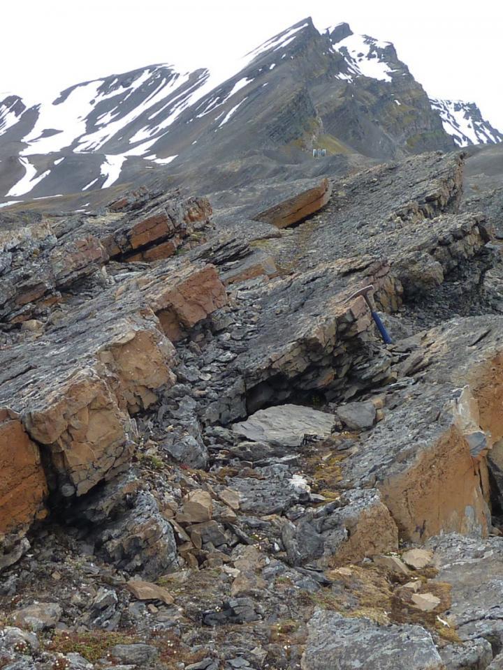 The Kapp Starostin Formation, Festningen Section, Spitsbergen