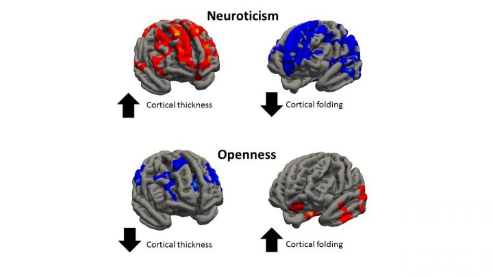 Neuroticism and Openness
