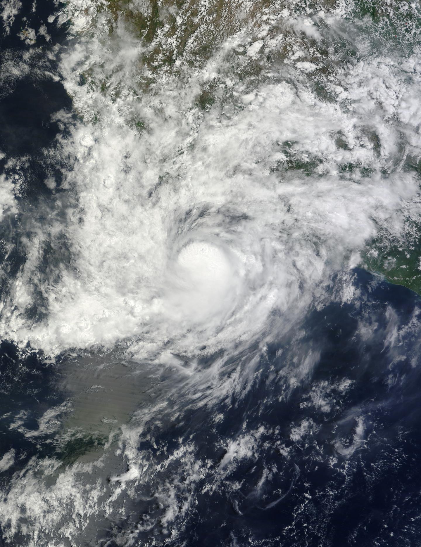 Terra Image of Carlos