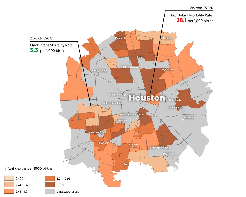 Infant Mortality in Houston