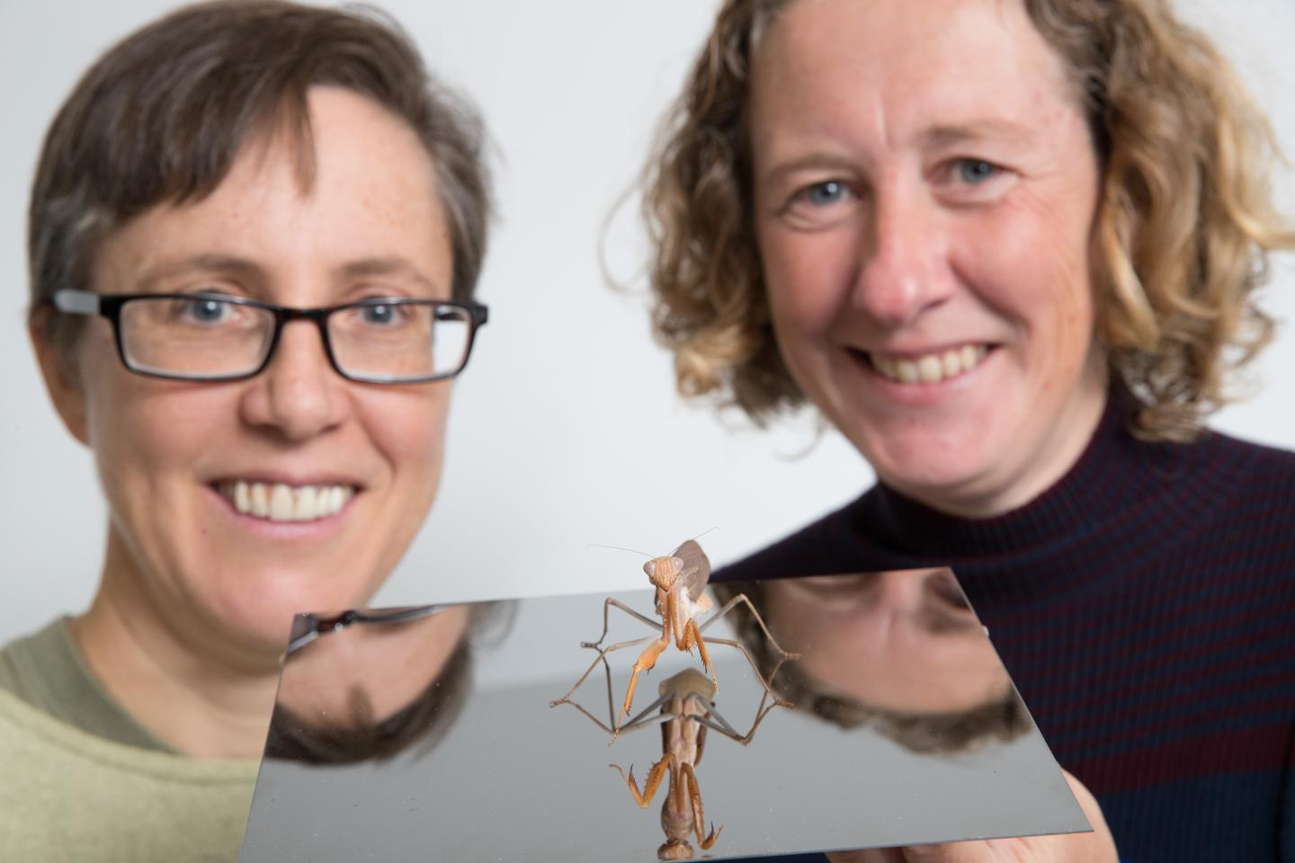 Praying Mantis with Profs Candy Rowe and Jenny Read