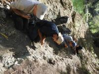 River Outcrop in Puerto Rico Offers Window in Caribbean's Past